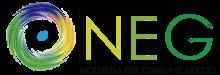 NEG INGENIERIA